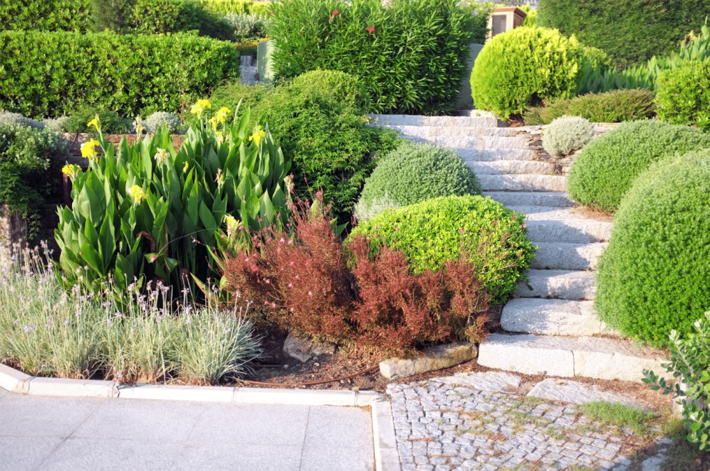 Landscaping and Hardscaping services in Miami